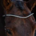 PS of Sweden Sleek Alaska Crystal browband