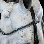 PS of Sweden sleek deep sapphire Crystal browband