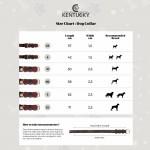 Kentucky dogwear plaited dog collar- Olive Green