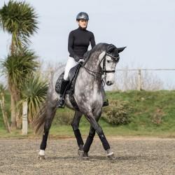Woof Wear Black Dressage Saddle Pad - Vision Range