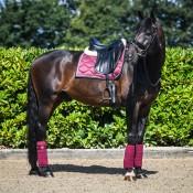 Dressage Saddle Cloths