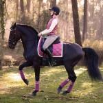 PS of Sweden Monogram Renaissance Dressage Saddle Pad