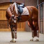 PS of Sweden Monogram Walnut Dressage Saddle Pad